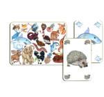 Zanimatch - kártyajáték